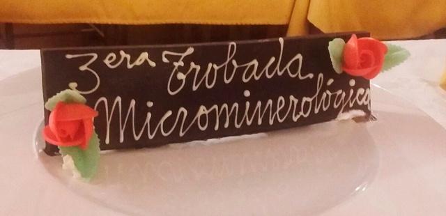 26 i 27 de maig de 2018: III Trobada de Micromineralogia i Sistemàtica Mineral de Camprodon-Rocabruna Whatsa13