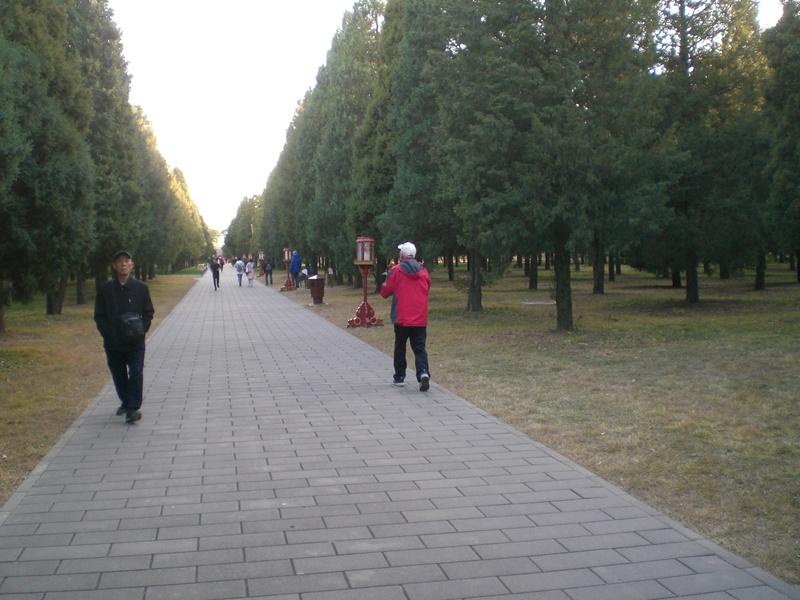 Voler en Chine Cimg3313