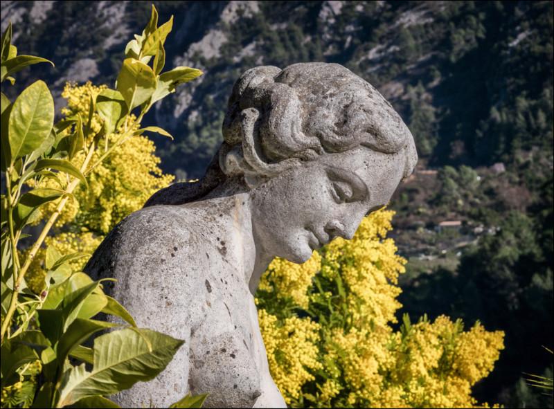 """ Dans le jardin de Martine "" Topaz_12"