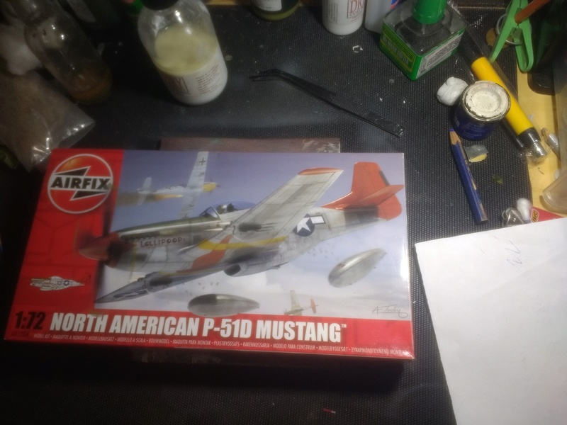 P51D Mustang Img_2011