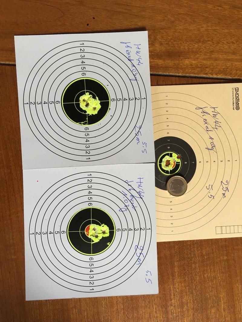 Pistolet weihrauch Hw44 5.5 H&N jsb 1.03g 25m en appui lunette hawke 4-9x32 9b858110