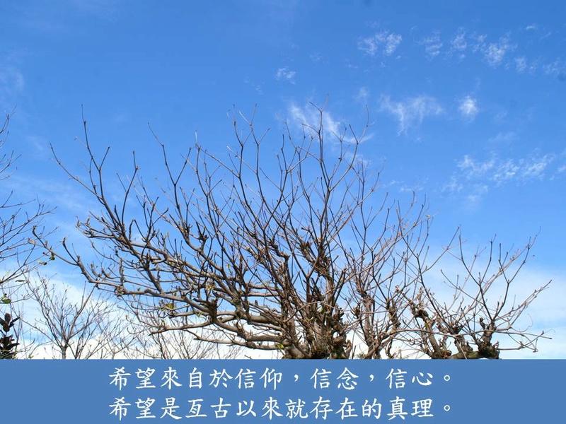 明智心語--希望系列 Aozyu210