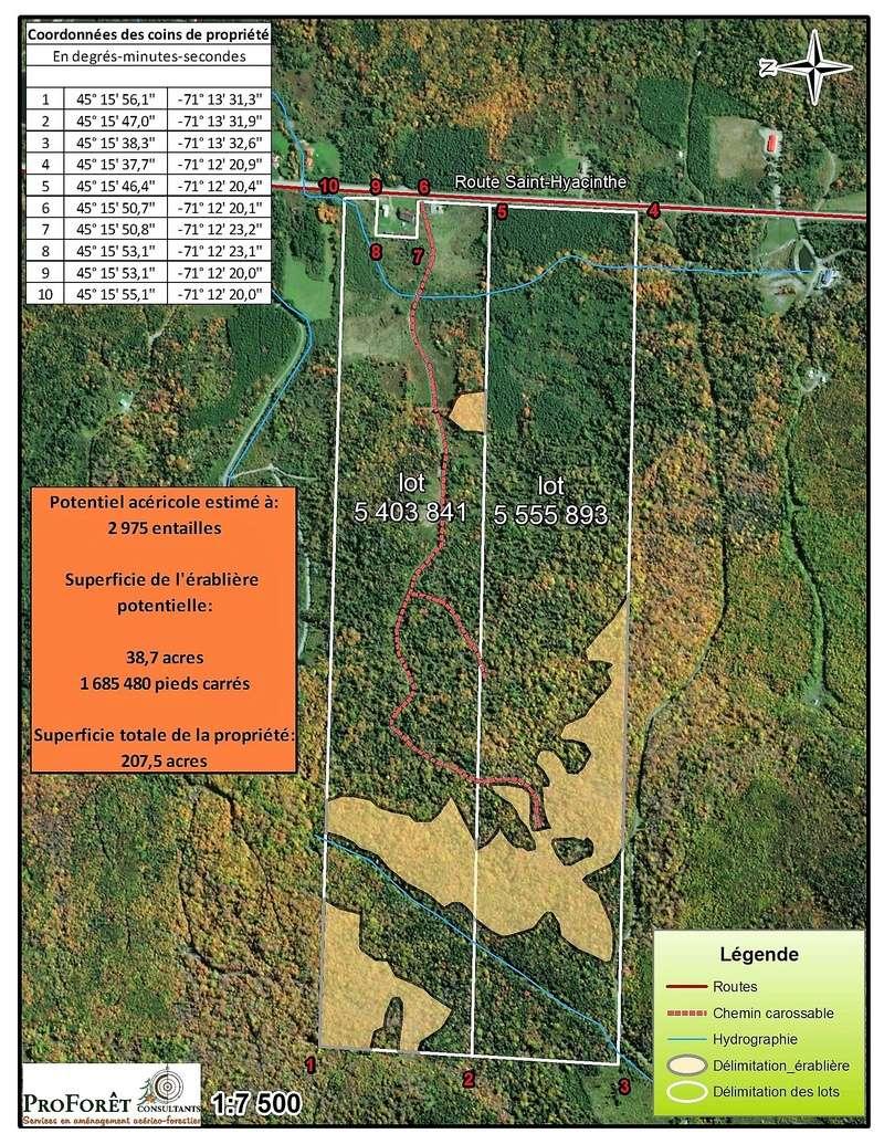 Terre a bois 207 acres 3000 entailles de pret Charti10