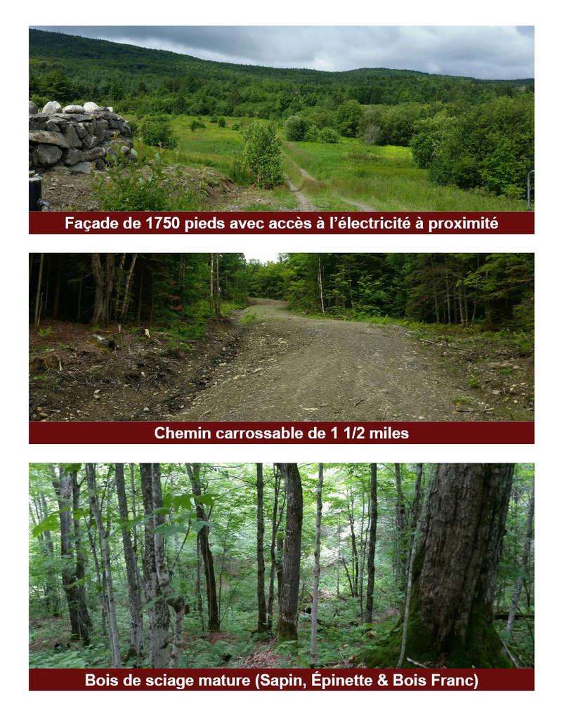 Terre a bois 207 acres 3000 entailles de pret Fiche_11
