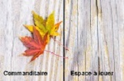 Photos d'automne !!! Foregr14
