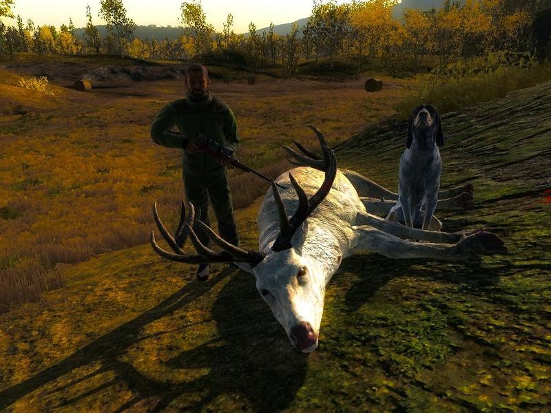Ciervo rojo albino 263cd410