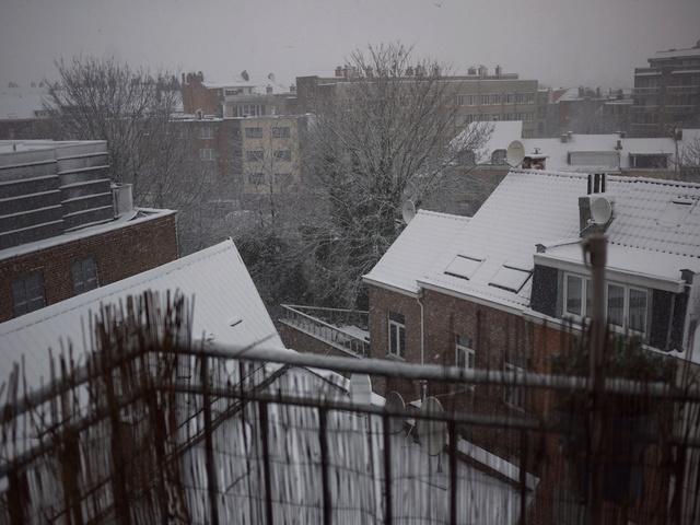 Let It Snow ... P1040410