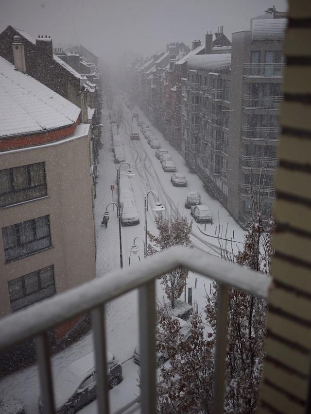 Let It Snow ... P1040411