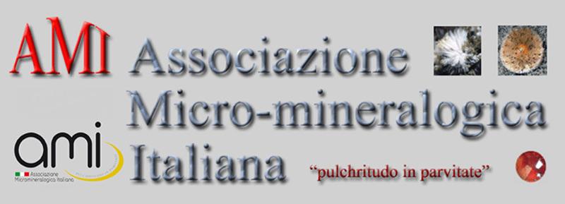 26 i 27 de maig de 2018: III Trobada de Micromineralogia i Sistemàtica Mineral de Camprodon-Rocabruna Ami10