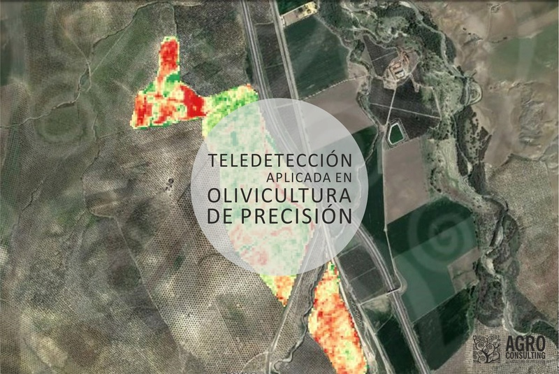 Teledetección aplicada en olivicultura de precisión Telede10