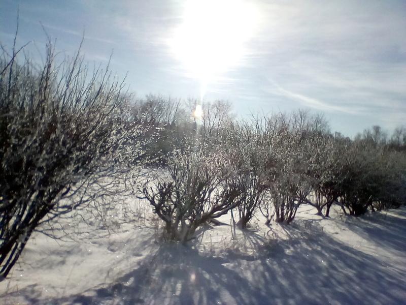 Поездка в За тонск - 25 января 2018 г. Img_2011