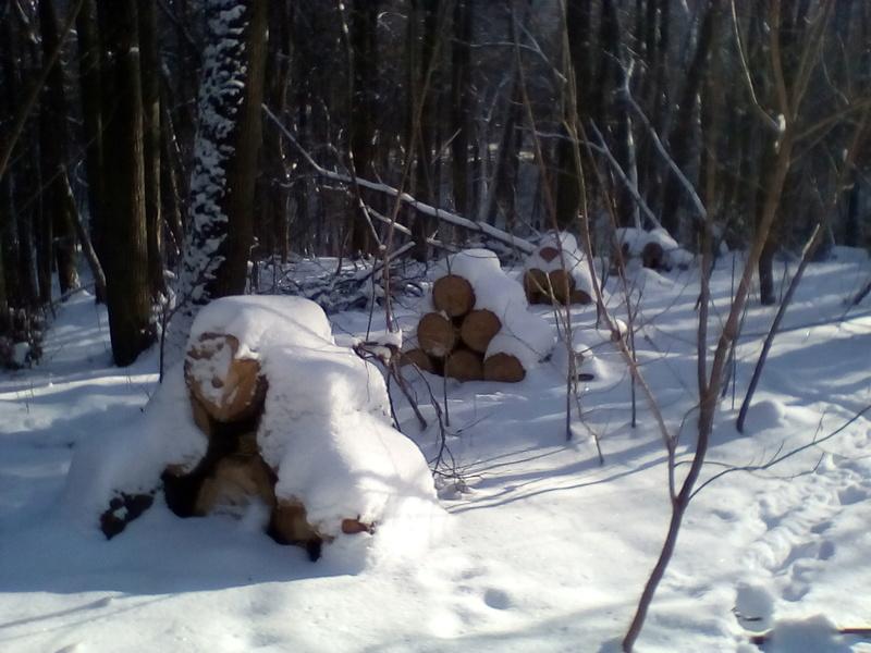 Поездка в За тонск - 25 января 2018 г. Img_2033