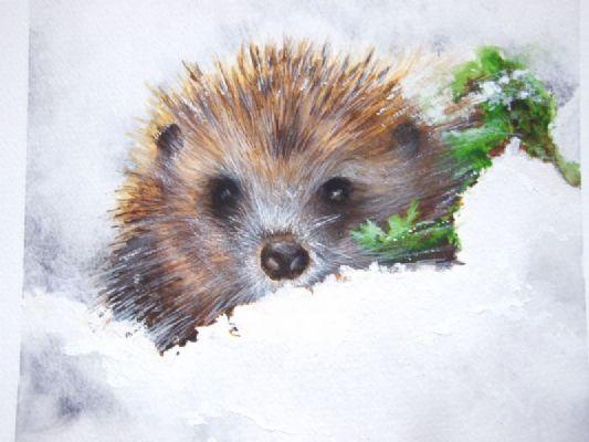 Les animaux peints à l'AQUARELLE - Page 12 00705710