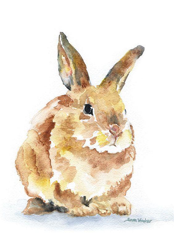 Les animaux peints à l'AQUARELLE - Page 16 1060fa10