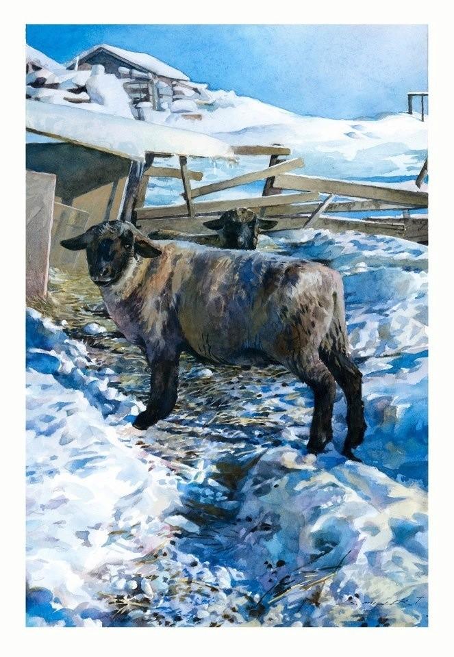 Les animaux peints à l'AQUARELLE - Page 12 2d079710