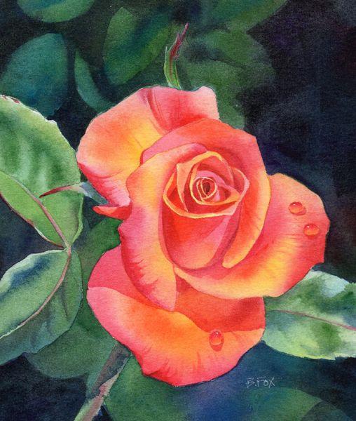 Le doux parfum des roses - Page 20 46681710