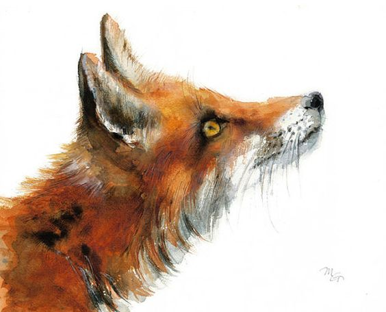 Les animaux peints à l'AQUARELLE - Page 12 4fd60f10