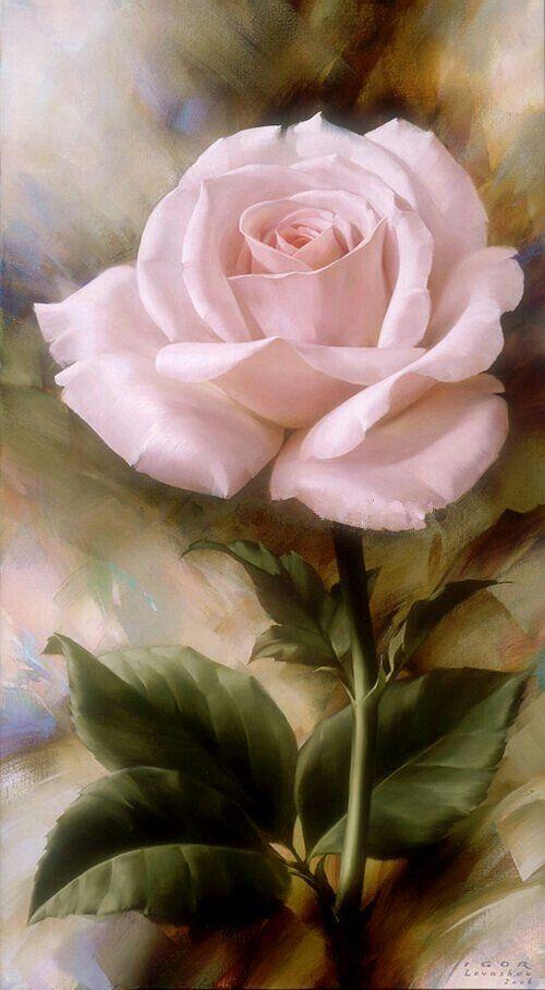 Le doux parfum des roses - Page 18 92b2ee10