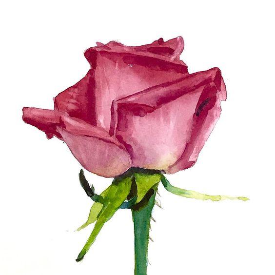 Le doux parfum des roses - Page 20 9cf1d610