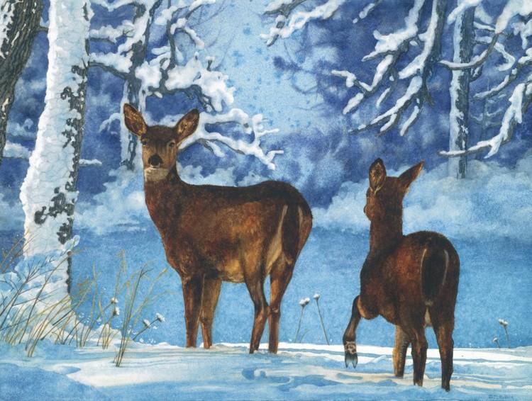Les animaux peints à l'AQUARELLE - Page 12 C381b510