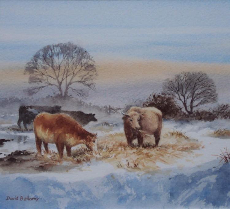 Les animaux peints à l'AQUARELLE - Page 13 Cattle10