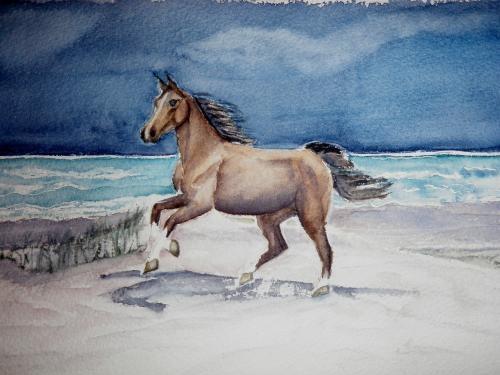 Les animaux peints à l'AQUARELLE - Page 13 Cheval10