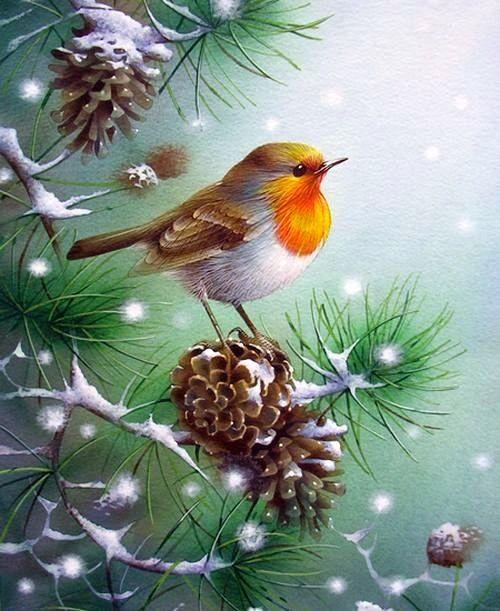 La Magie de Noël ... David_11