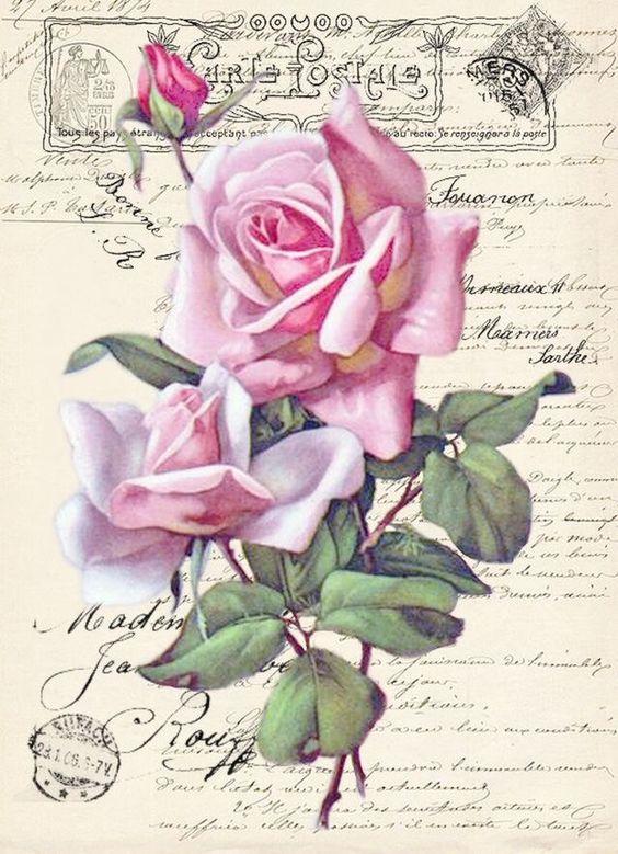 Le doux parfum des roses - Page 20 E82adb10