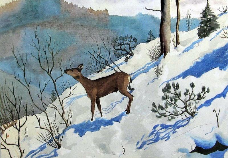 Les animaux peints à l'AQUARELLE - Page 13 F5376310