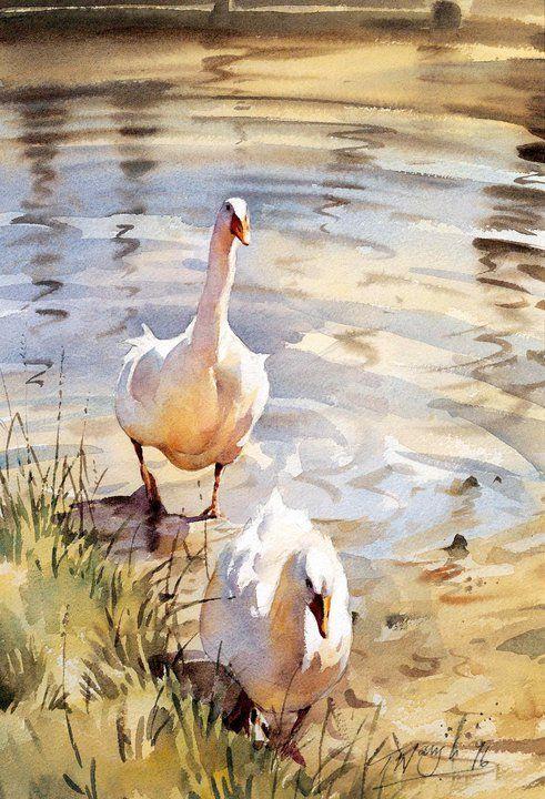 Les animaux peints à l'AQUARELLE - Page 15 F5cbee10