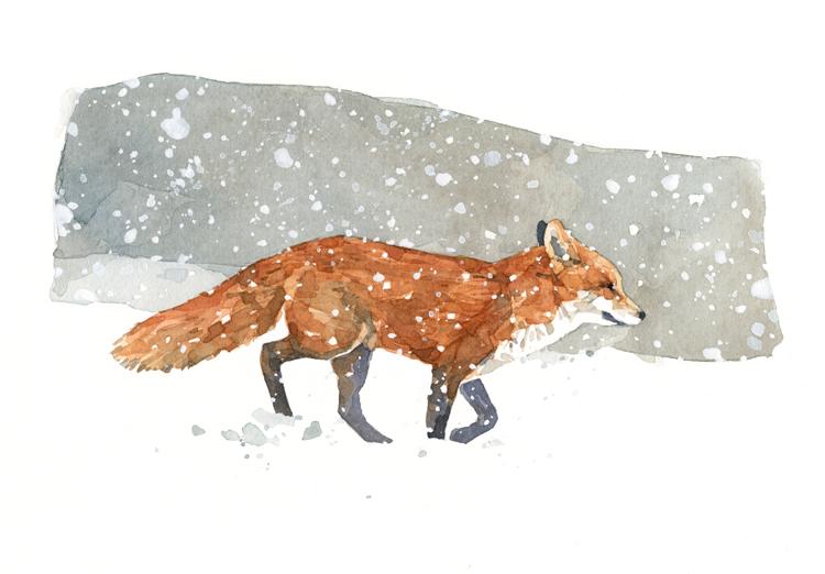 Les animaux peints à l'AQUARELLE - Page 13 Fox-sn10