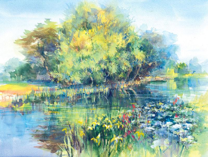 L'eau paisible des ruisseaux et petites rivières  - Page 23 Jelber10