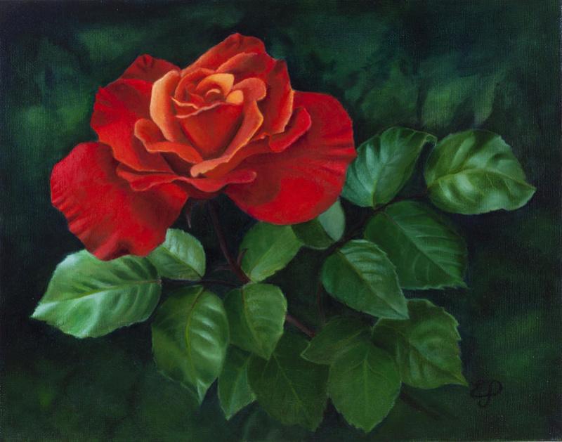 Le doux parfum des roses - Page 18 Red-ro10