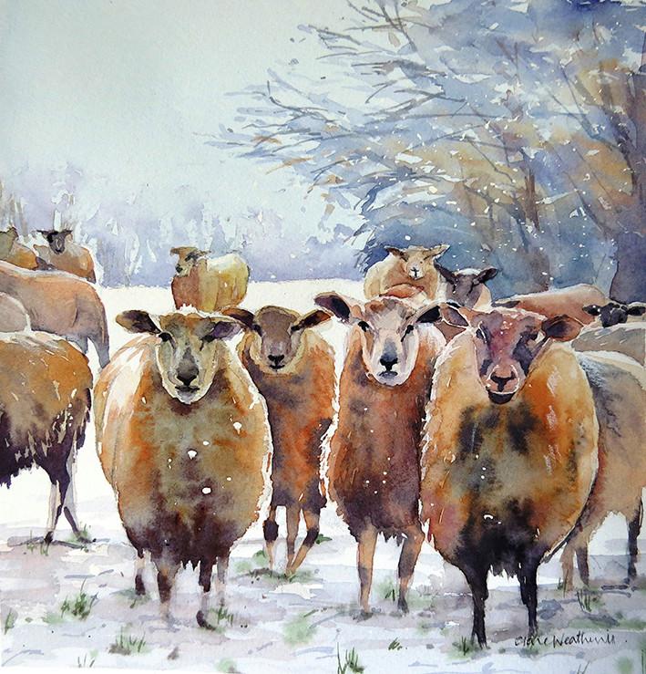 Les animaux peints à l'AQUARELLE - Page 13 Sheep_10