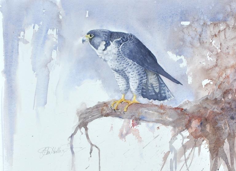 Les animaux peints à l'AQUARELLE - Page 13 Winter28