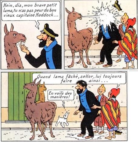 Zippo sur Le Bon Coin (2éme tome) - Page 9 Tintin10