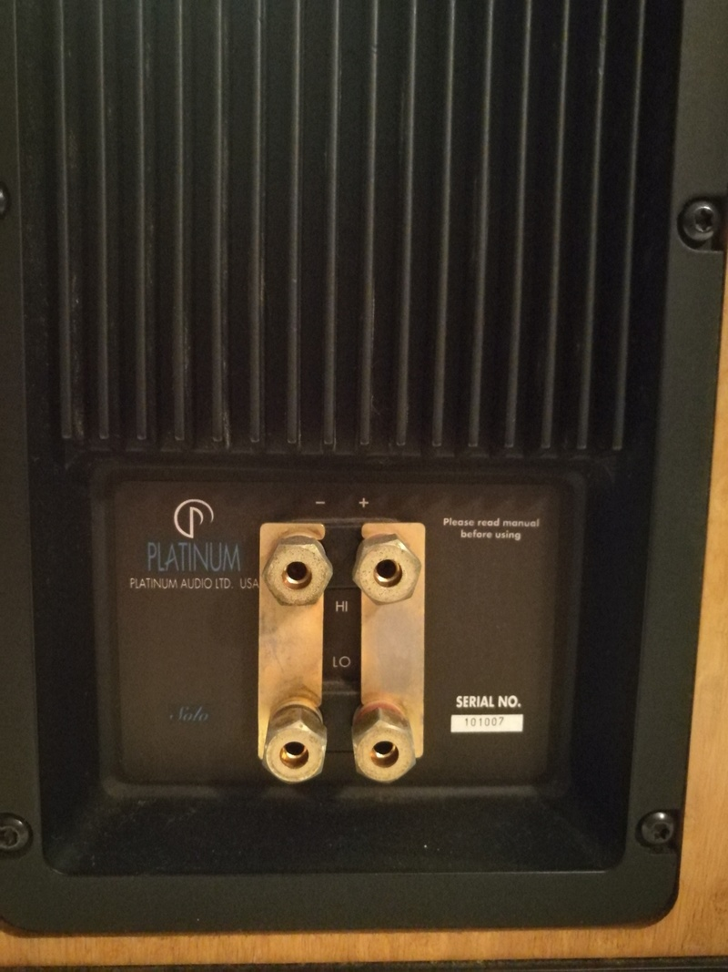Platinum Solo Speakers with original Platinum floor stand Img_2019