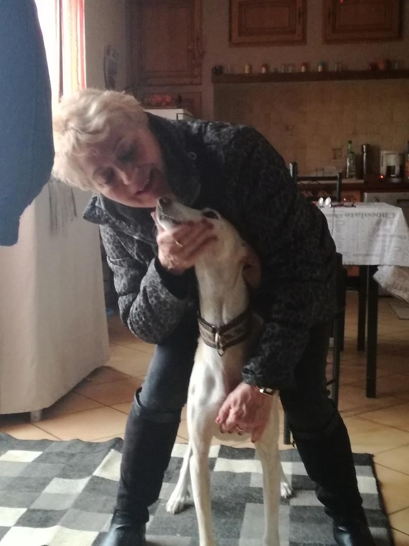 Boby petit pod  tendresse de 9 ans Adopté  - Page 2 Img_2022