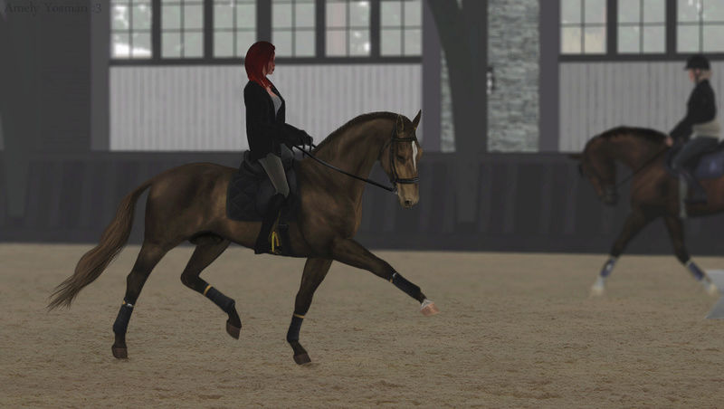 "Equestrian Centre ""Silver Ambassadors"" - Страница 28 Screen11"