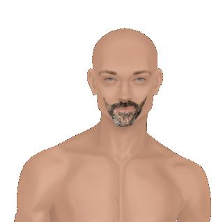 Male Facial Hair Looks Wvogel10