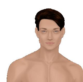 Male Facial Hair Looks Wvogel12