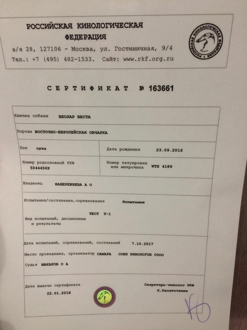 ВОСТОЧНО-ЕВРОПЕЙСКАЯ ОВЧАРКА ВЕОЛАР ВЕСТА - Страница 9 7fac1310