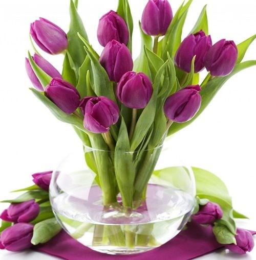 10 loài hoa được mệnh danh là đẹp nhất thế giới Hoa-de14