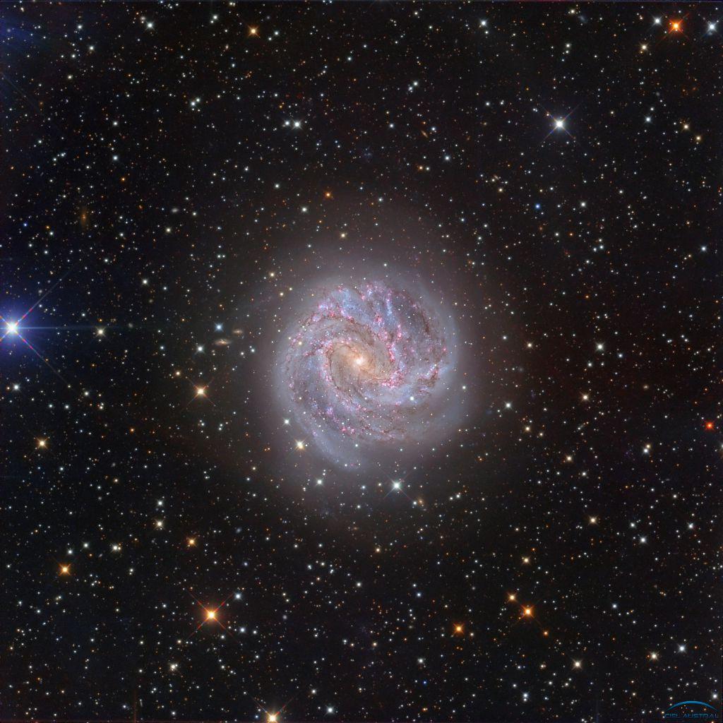 """[Ciel Austral] M83 au CDK 20"""" depuis le Chili (1ere lumière) Photo712"""