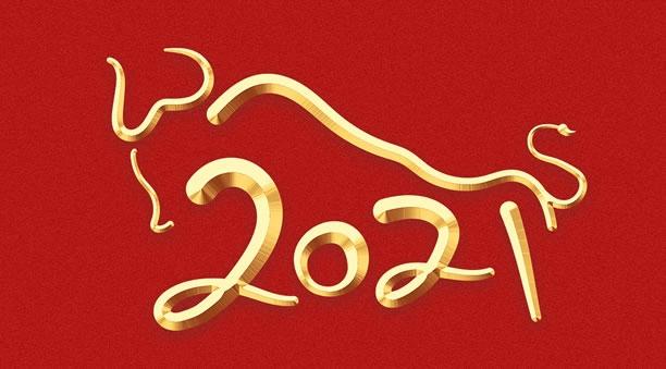 Vận Trình - Phong Thủy 2021 - Tân Sửu ! Happy-10