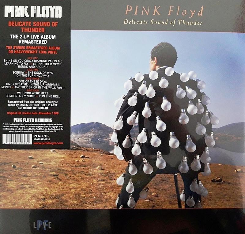 Pink Floyd. La sempiterna y punzante pregunta. Delica10