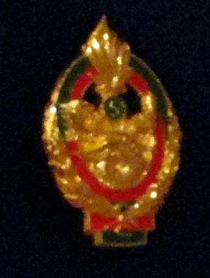 Médaille Ancien Combattant ? Captur10