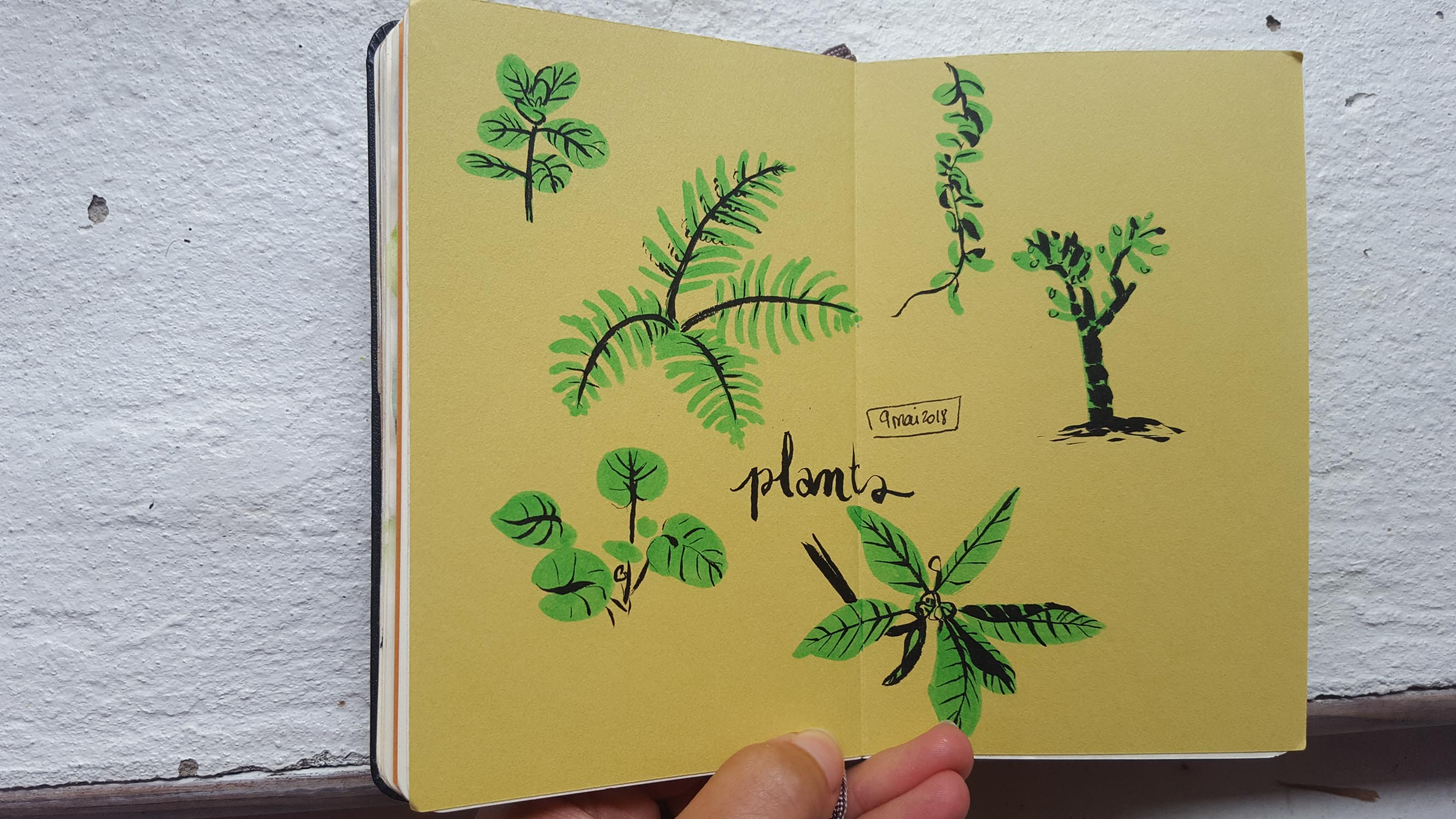 Sketchbook : IsaArne [ Challenge de l'ete P7 ] - Page 5 Facecr42
