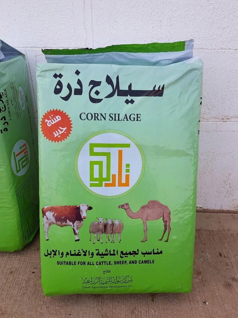 سيلاج الذرة الشامية - شركة تبوك الزراعية - تادكو  Whatsa10