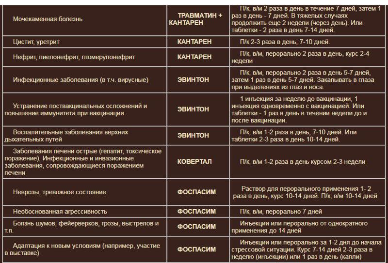 Гомеопатия Хелвет 29531c11